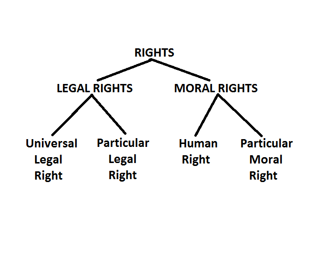 Source : polsci307.wordpress.com Fig : A Taxonomic Structure of Rights