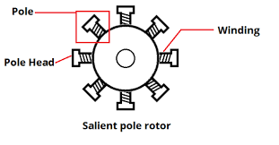 fig: Salient pole rotor